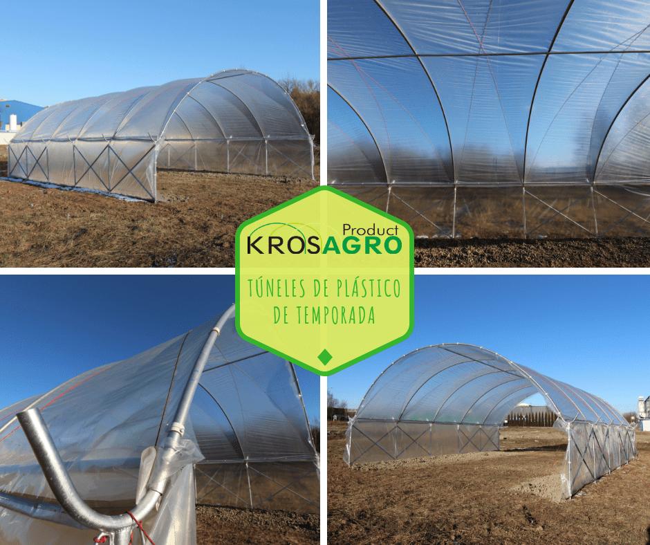túnel de plástico para cultivo de zarzamora
