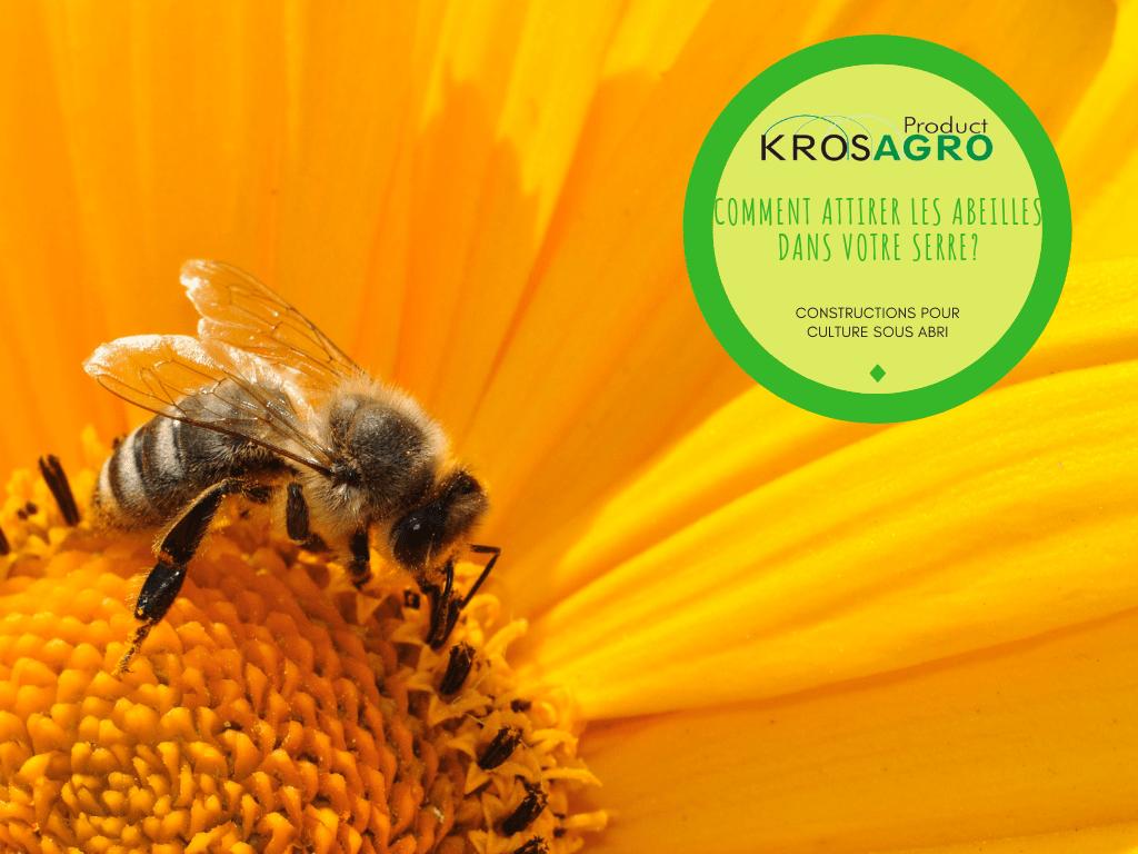 comment attirer les abeilles dans votre serre fabricant. Black Bedroom Furniture Sets. Home Design Ideas